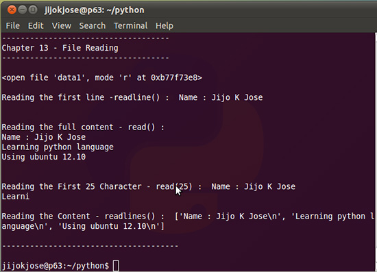 python-file-reading-13